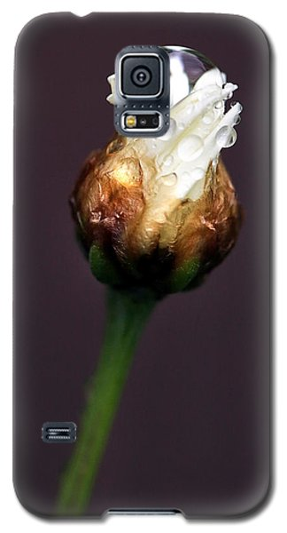 Galaxy S5 Case featuring the photograph Synergy I by Marion Cullen