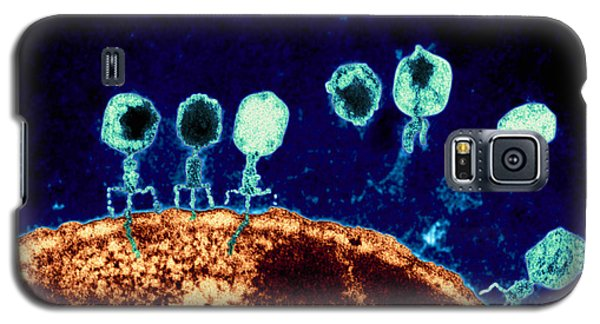 T-bacteriophages And E-coli Galaxy S5 Case