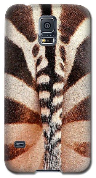 Tailing A Zebra Galaxy S5 Case