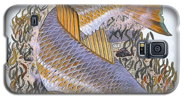 Drum Galaxy S5 Case - Tailing Redfish by Carey Chen