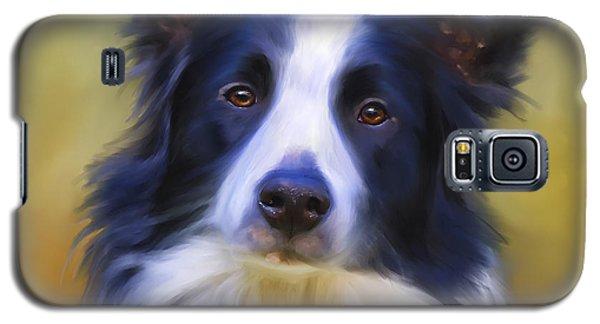 Beautiful Border Collie Portrait Galaxy S5 Case