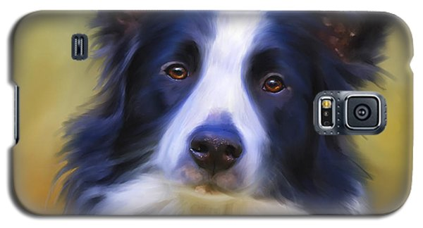 Beautiful Border Collie Portrait Galaxy S5 Case