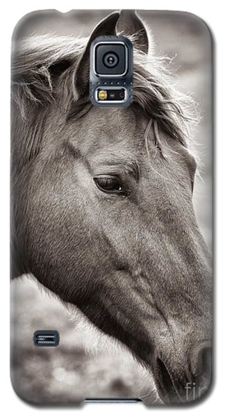 Galaxy S5 Case featuring the photograph Take A Look by Maciej Markiewicz