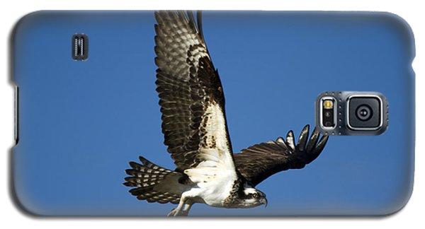 Take Flight Galaxy S5 Case by Mike  Dawson