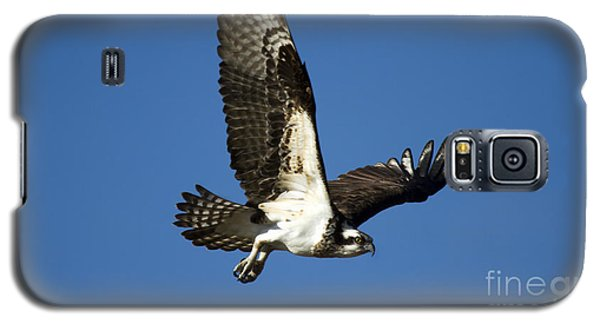 Take Flight Galaxy S5 Case