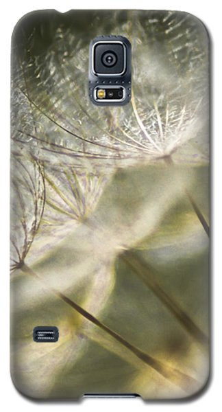 Take Me With You When You Go Galaxy S5 Case by Jan Bickerton