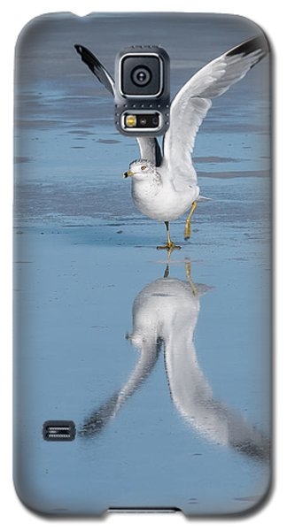 Take Off Galaxy S5 Case