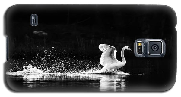 Take Off Galaxy S5 Case by Rose-Maries Pictures