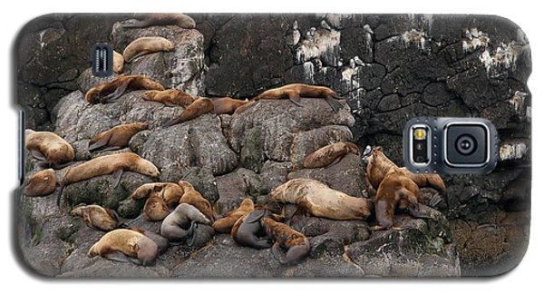 Takin' It Easy Galaxy S5 Case