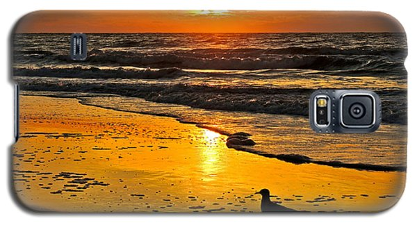 Taking It All In Galaxy S5 Case by Eve Spring