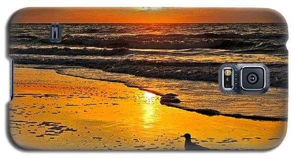 Taking It All In Galaxy S5 Case