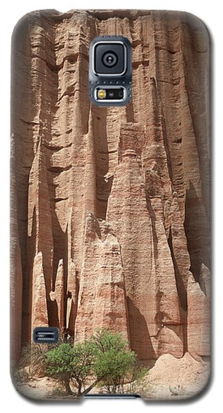 Galaxy S5 Case featuring the photograph Talampaya Gorge Argentina by Rudi Prott