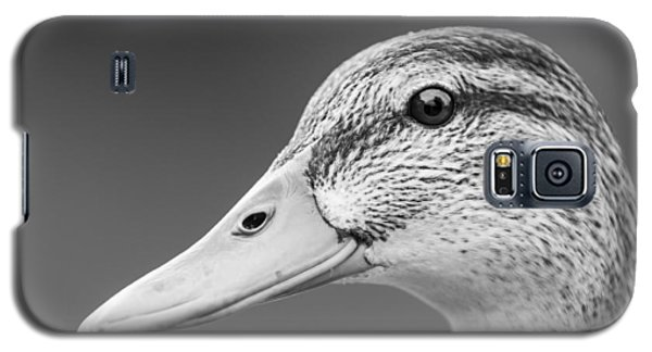 Talk Like A Duck Galaxy S5 Case