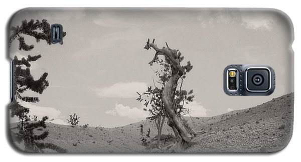 Talking Trees In Bryce Canyon Galaxy S5 Case