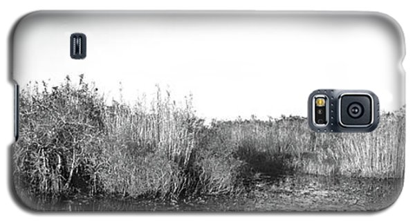 Tall Grass At The Lakeside, Anhinga Galaxy S5 Case