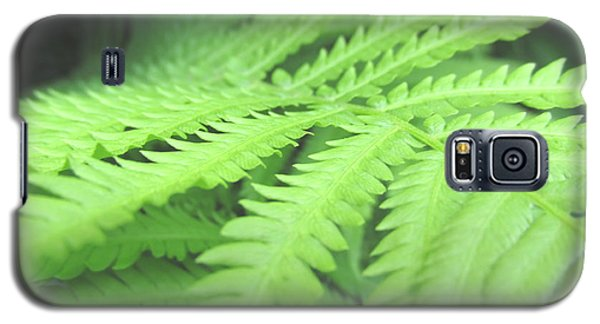 Galaxy S5 Case featuring the photograph Tall Lady Fern Fine Art Print Green Summer Photograph By Penny Hunt by Penny Hunt