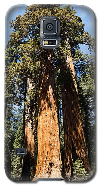 Tall One Galaxy S5 Case
