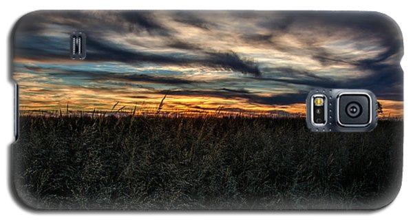 Tallgrass Sunset Galaxy S5 Case