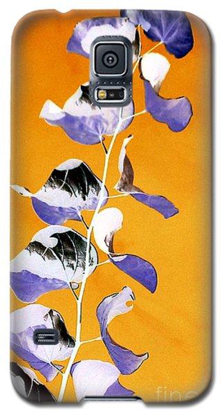 Tangerine Sky Galaxy S5 Case