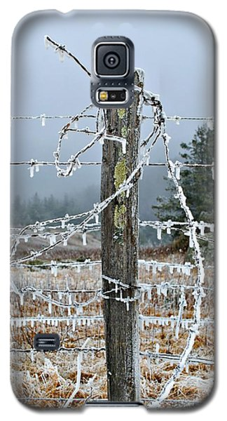 Tangled Galaxy S5 Case by Kelly Nowak