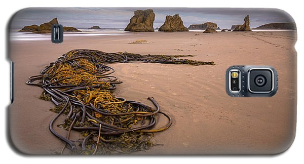 Tangled.... Bandon Oregon Galaxy S5 Case