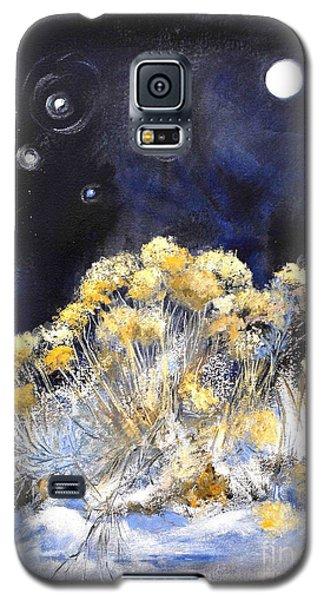 Taos Night Orbs Galaxy S5 Case