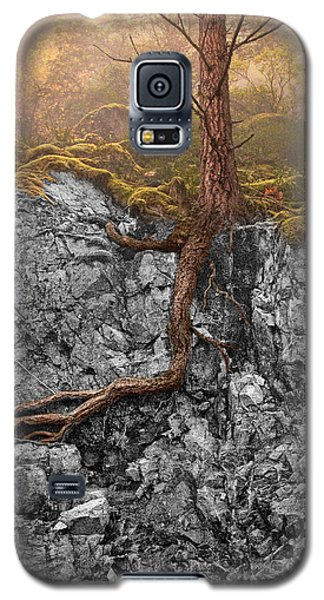 Taproot Galaxy S5 Case