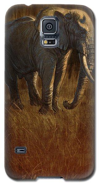 Tarangire Bull 2 Galaxy S5 Case