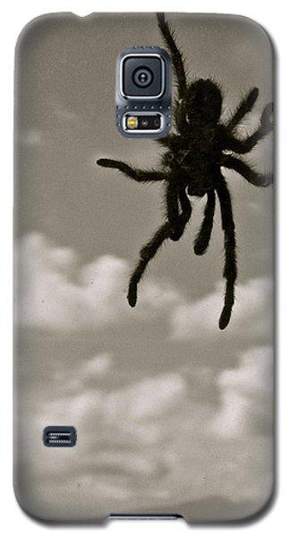 Tarantula Galaxy S5 Case
