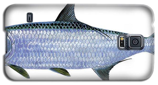 Swordfish Galaxy S5 Case - Tarpon by Carey Chen