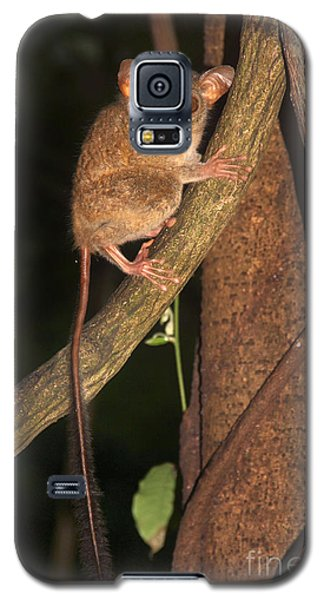 Galaxy S5 Case featuring the photograph Tarsius Tarsier  by Sergey Lukashin