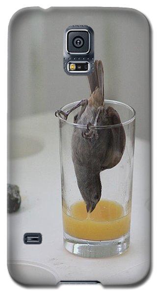 Tasty Juice Galaxy S5 Case