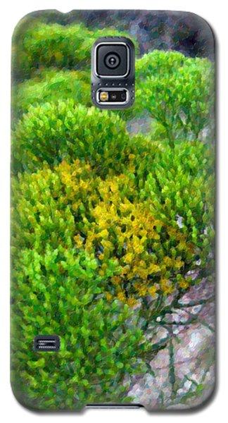 Tatalencho Galaxy S5 Case