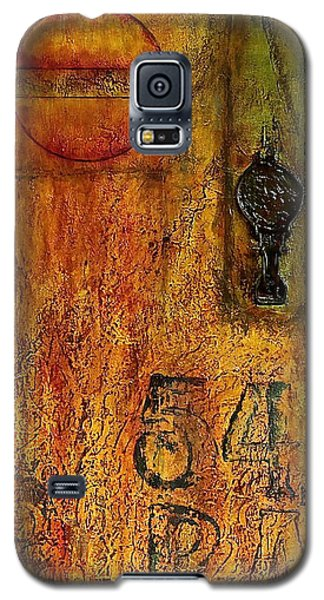 Tattered Wall  Galaxy S5 Case by Bellesouth Studio