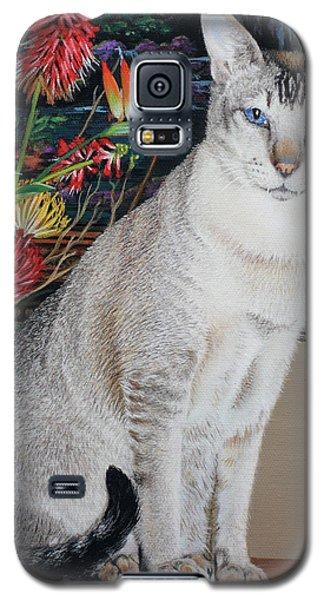 Tava Galaxy S5 Case