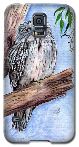 Tawny Frogmouth Galaxy S5 Case