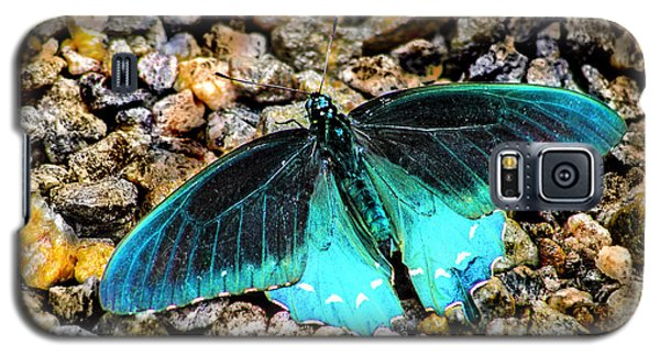 Teal On The Rocks Galaxy S5 Case by Karen Stephenson