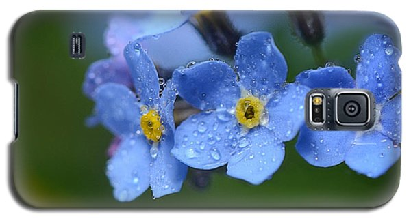 Tearful Goodbye Galaxy S5 Case