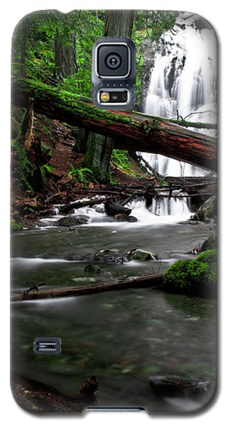 Temperate Old Growth Galaxy S5 Case