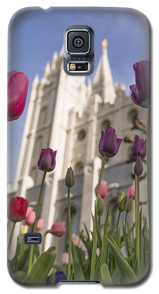 Tulip Galaxy S5 Case - Temple Tulips by Chad Dutson