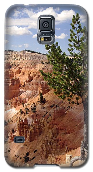 Galaxy S5 Case featuring the photograph Tenacious by Meghan at FireBonnet Art