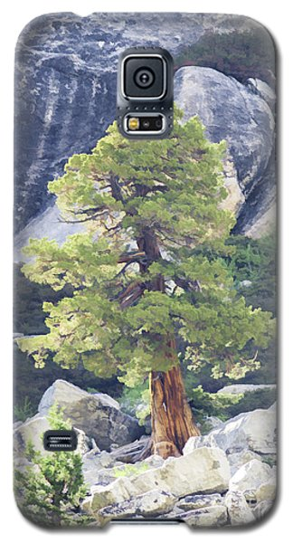 Tenaya Juniper Pine Galaxy S5 Case