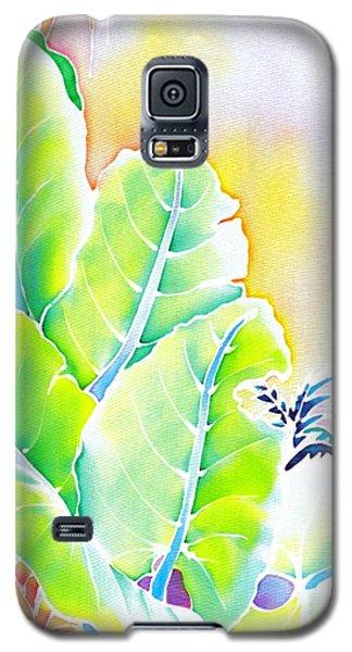 Tender Evening Galaxy S5 Case