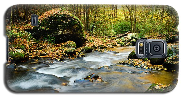 Tennessee Stream In Fall Galaxy S5 Case