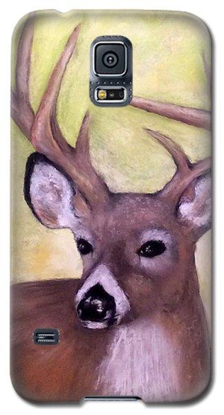 Tennessee Wild Life - Buck Galaxy S5 Case by Annamarie Sidella-Felts
