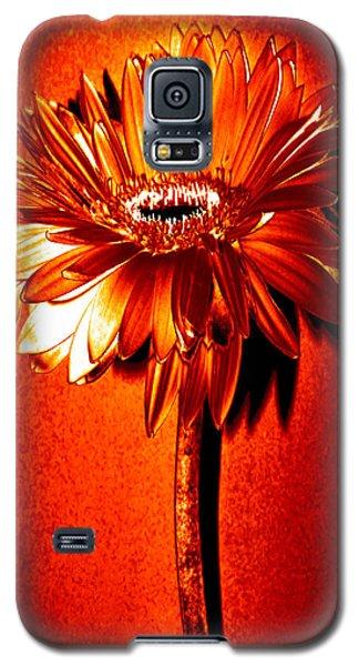 Tequila Sunrise Zinnia Galaxy S5 Case by Sherry Allen