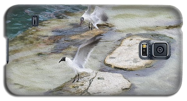 Tern On The Shore Galaxy S5 Case
