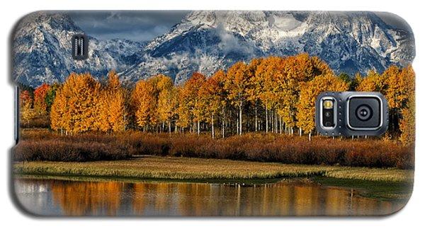 Teton Autumn Galaxy S5 Case