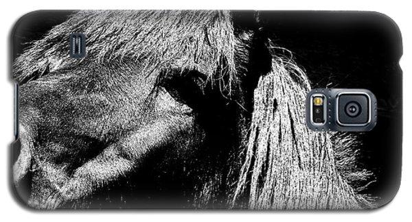 Teton Horse Galaxy S5 Case