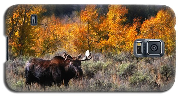 Teton Moose Galaxy S5 Case